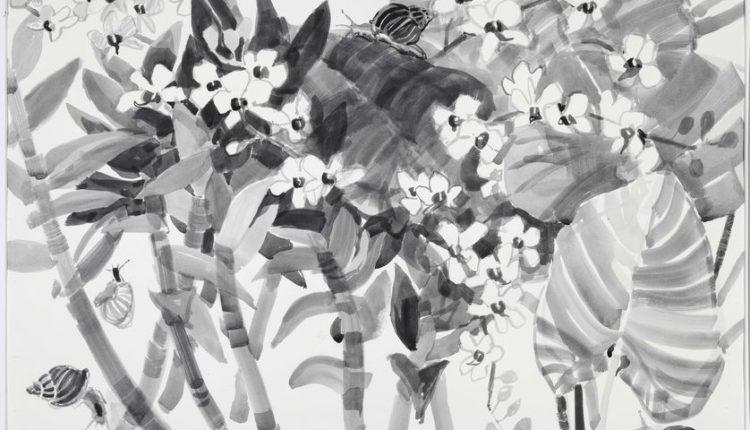 Garden_Orchids_vistavka_8