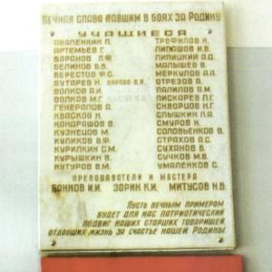 fedoskin